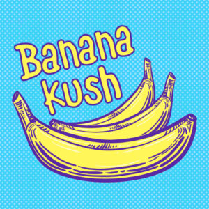Read more about the article Banana Kush